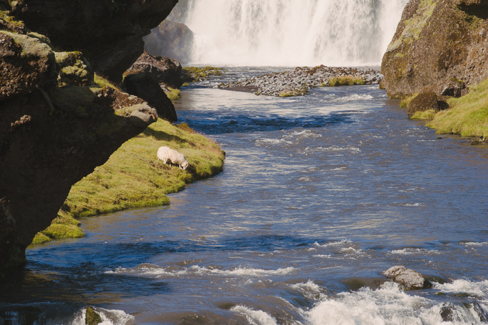 iceland-day-4-5